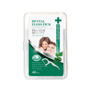 Dentiste' Dental Floss Pick
